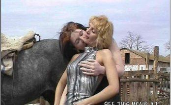 Шалашовки в самом соку отсосали фаллос жеребчику zoo porn картинки