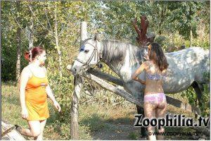 Молодые извращенки исполняют с концом коня на лужайке зоо порно фотоснимки