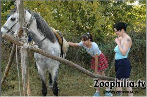 Картинки zoo ебли с двумя аморальными блядюгами zoo horse