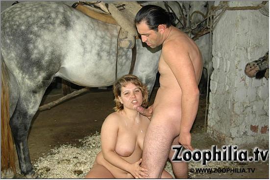 Секс с лошадью откормленная благоверная отсасывает жеребцу на зоо фотоснимке