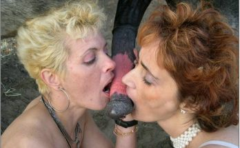 Zoo porn фоточки старенькые скотолюбки посасывают лошадиный член