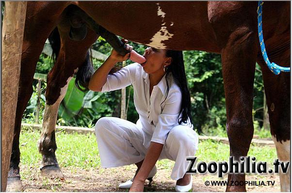 Блядовитая латинская зоофилка делает минет лошадке пока что мужик дрыхает