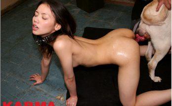 Настоящие азиатские зоо порно фотографии в хорошем качестве перекачать на мобилу