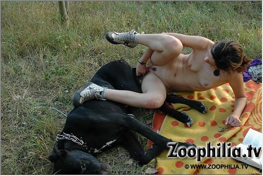 Лучшие картинки с порнухой zoofilia porn с собакой на полянке