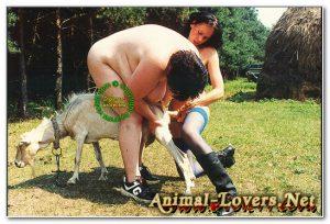 Шлюхи надрачивают козочке мастурбатором зоо порно картинки