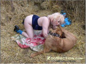 Порочная извращенка делает минет собачке на траве зоопорно ххх фотографии