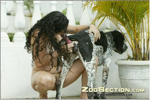 Шлюшка делает минет на фото порно зоо любимой псине