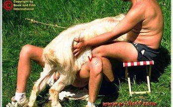 Фотографии порнозоо с рогатым козлом на травке