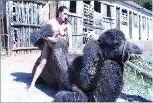 Porn photo зоопорно мокрая зоофилка растирает пизду о горбик большого верблюда