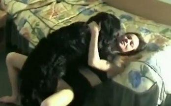 Porn dogs темный кобель нахлобучивает дамочку в комнате зоопорно интимное